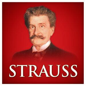 Strauss Orchestra Vienna 歌手頭像