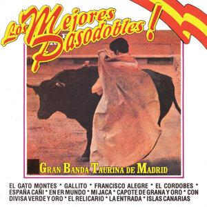 Gran Banda Taurina De Madrid 歌手頭像