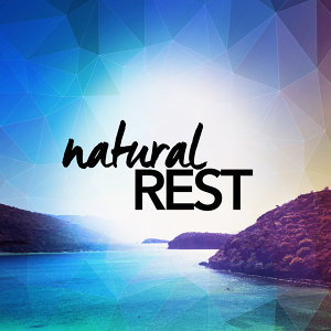 Nature Spa Meditation Music|Rest & Relax Nature Sounds Artists|Sounds of Nature Relaxation 歌手頭像