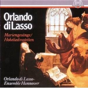 Orlando di Lasso Ensemble Hannover 歌手頭像