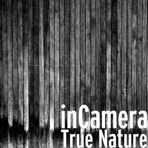 inCamera 歌手頭像