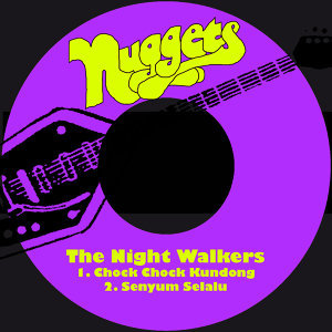 The Night Walkers 歌手頭像
