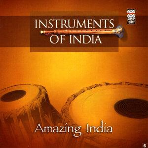 Instruments of India 歌手頭像