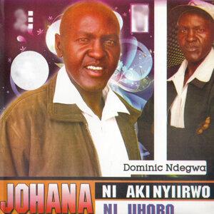 Dominic Ndegwa 歌手頭像
