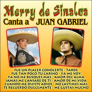 Merry De Sinaloa 歌手頭像
