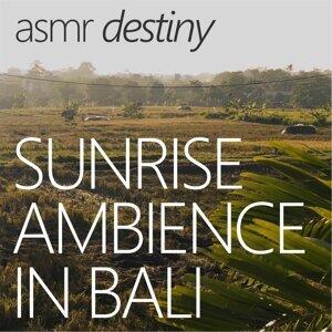 Asmr Destiny