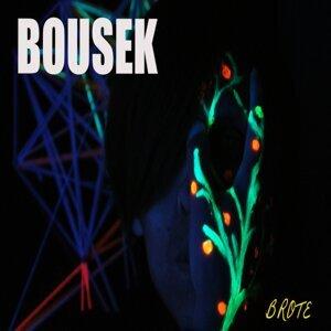 Bousek 歌手頭像