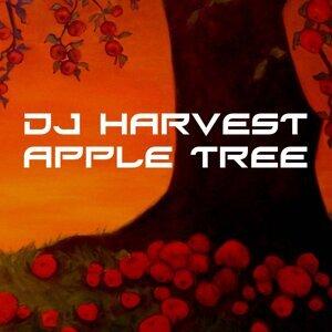 DJ Harvest 歌手頭像