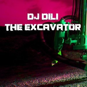 DJ Dili 歌手頭像