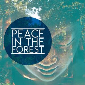 Deep Sleep Meditation|Deep Sleep Nature Sounds|Deep Sleep Relaxation 歌手頭像