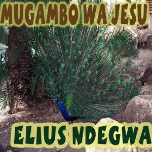 Elius Ndegwa 歌手頭像
