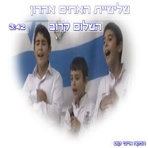 שלישיית האחים אהרון 歌手頭像