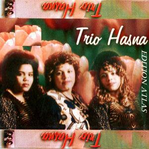 Trio Hasna 歌手頭像