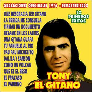 Tony El Gitano 歌手頭像