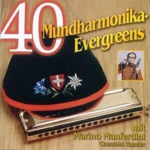 40 Mundharmonika Evergreens 歌手頭像