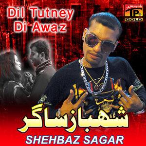 Shehbaz Sagar 歌手頭像