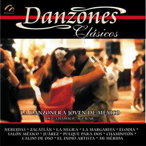 La Danzonera Joven De México 歌手頭像