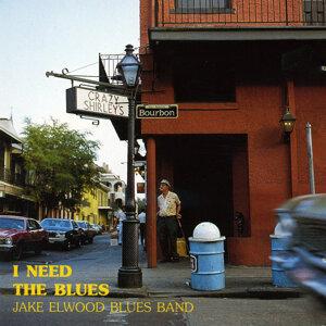 Jake Elwood Blues Band 歌手頭像