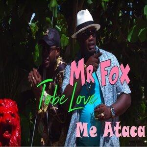 Mr Fox 歌手頭像