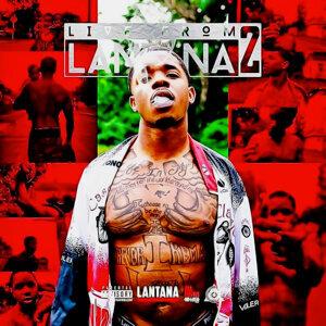 Lantana 歌手頭像