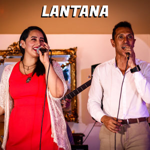 Lantana Artist photo