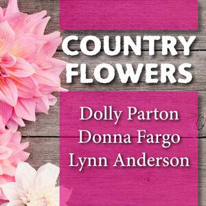 Lynn Anderson, Dolly Parton, Donna Fargo 歌手頭像
