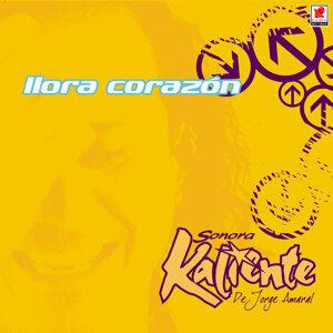 Sonora Kaliente De Jorge Amaral 歌手頭像