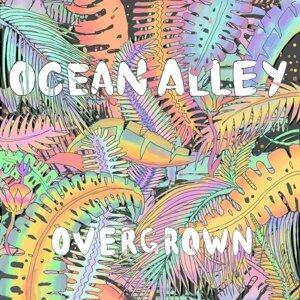 Ocean Alley 歌手頭像
