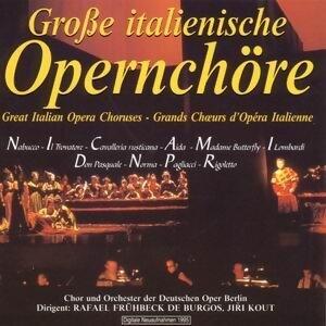 Chor und Orchester der Deutschen Oper Berlin, Rafael Fruhbeck de Burgos アーティスト写真