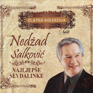 Nedzad Salkovic 歌手頭像