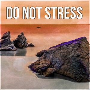 New Age Anti Stress Universe & Anti Stress Music Zone 歌手頭像
