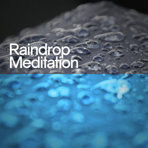 Rain Meditation, Relaxing Sounds of Nature, Sounds of Nature White Noise Sound Effects 歌手頭像
