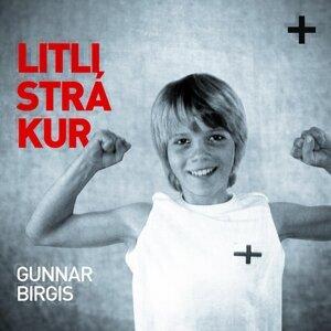 Gunnar Birgis 歌手頭像