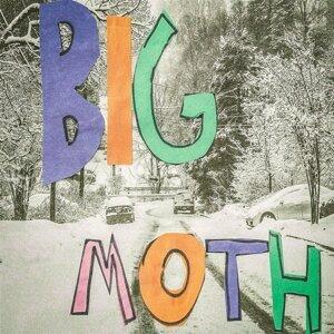 Big Moth 歌手頭像