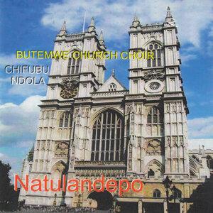 Butemwe Church Choir Chifubu Ndola 歌手頭像