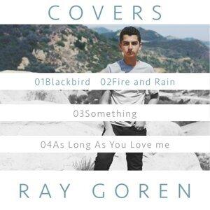 Ray Goren 歌手頭像