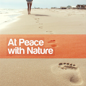 Nature Sound Series, Nature Ambience, Sleep Music with Nature Sounds Relaxation 歌手頭像