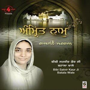 Bibi Satvir Kaur Ji 歌手頭像