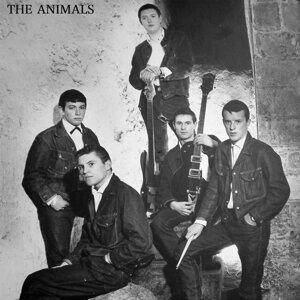 The Animals, Eric Burdon, Eric Burdon & The Animals 歌手頭像