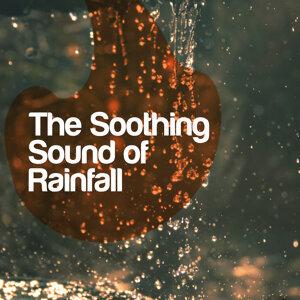 Musica para Bebes, Rain for Deep Sleep, Rain Sounds 歌手頭像