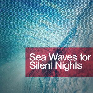 Ocean Beach Waves, Ocean Wave Sounds, Ocean Waves 歌手頭像