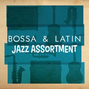 Bossa Nova, Bossa Nova Latin Jazz Piano Collective, Buena Vista Cuban Players 歌手頭像
