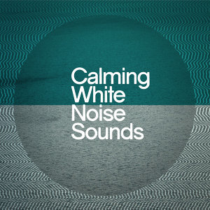 Soothing White Noise for Relaxation, White Noise New Age Calming Music, White Noise Research 歌手頭像