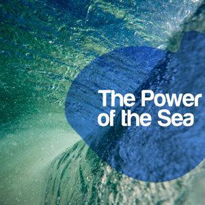 Calm Ocean Sounds, Ocean Sounds Collection, Underwater Deep Sleep White Noise Nature Ocean Sounds 歌手頭像