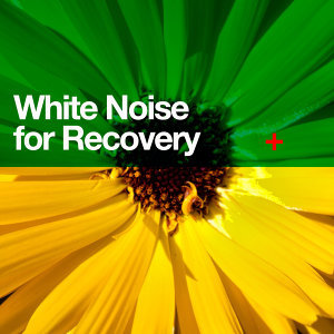 Soothing White Noise for Relaxation, Soothing White Noise for Sleeping Babies, Sounds of Nature White Noise for Mindfulness Meditation and Relaxation 歌手頭像