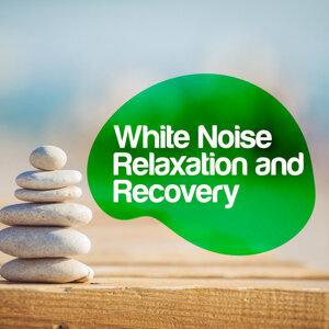Binaural Beats Brain Waves Isochronic Tones Brain Wave Entrainment, Binaural Beats Brainwave Entrainment, Relax Meditate Sleep 歌手頭像