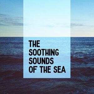 Ocean Beach Waves, Ocean Sounds, Ocean Sounds Collection 歌手頭像