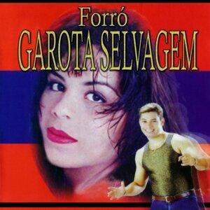 Forró Garota Selvagem 歌手頭像