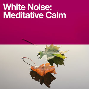 Meditation Awareness, Natrue White Noise, Natural White Noise for Babies 歌手頭像