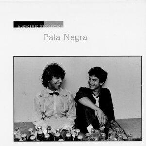 Pata Negra 歌手頭像